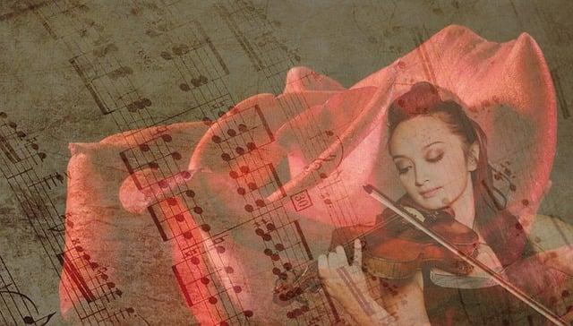 Rose, Music, Violin, Solistin, Violinist, Rose Bloom