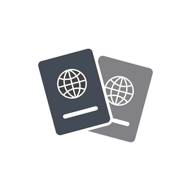 Visa, Travel, Travelers, Book, Citizenship, Document