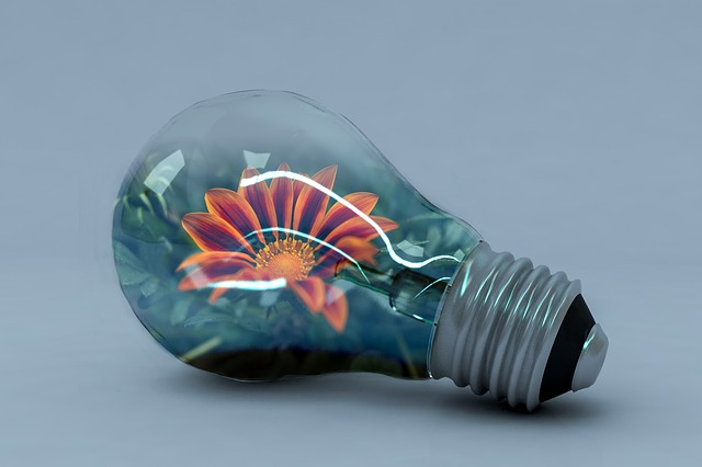 Incandescent Lamp, Energy, Creativity, Vivid