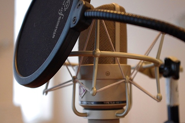 Microphone, Popscreen, Recording, Vocal Microphone