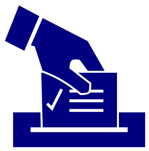 Ballot, Election, Vote