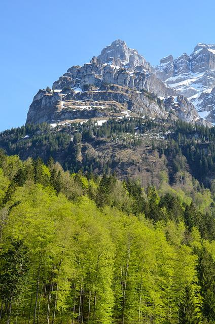 Vrenelisgärtli, Klöntal, Mountain Summit, Massif