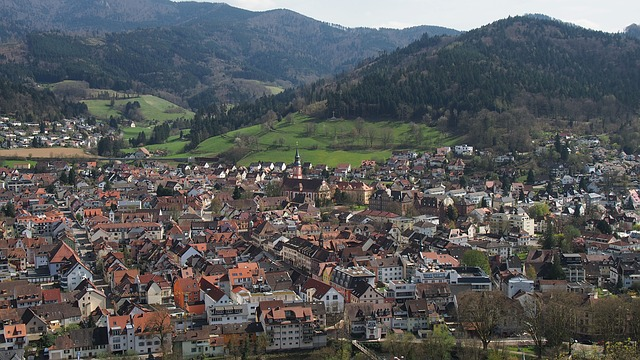 Waldkirch, Village, Black Forest, Bird's Eye View