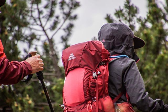 Backpack, Hiking, Trekking, Walk, Mountain, Alps