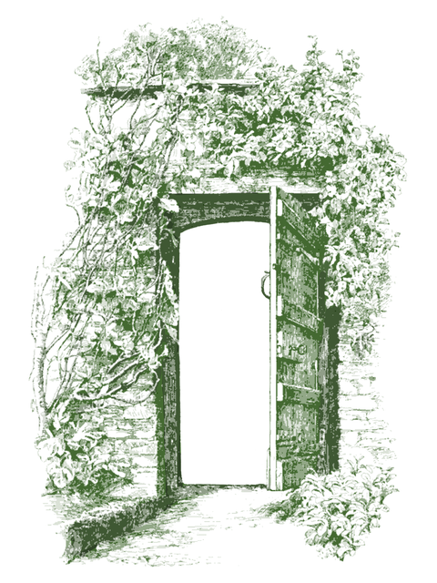 Vintage, Wall, Gate, Ivy, Old, Door, Doorway, Outdoor