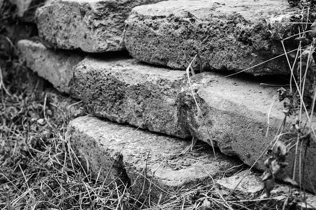 Free Photo Wall Old Bricks Texture Black And White Obstacle