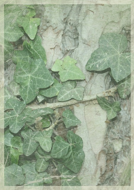 Leaf, Background, Green, Foliage, Wall Paper, Stained