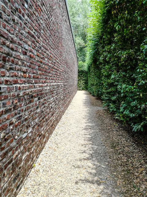 Wall, Hedge, Vanishing Point, Perspective, Away