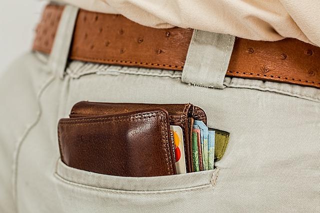 Wallet, Cash, Credit Card, Pocket, Money, Purse