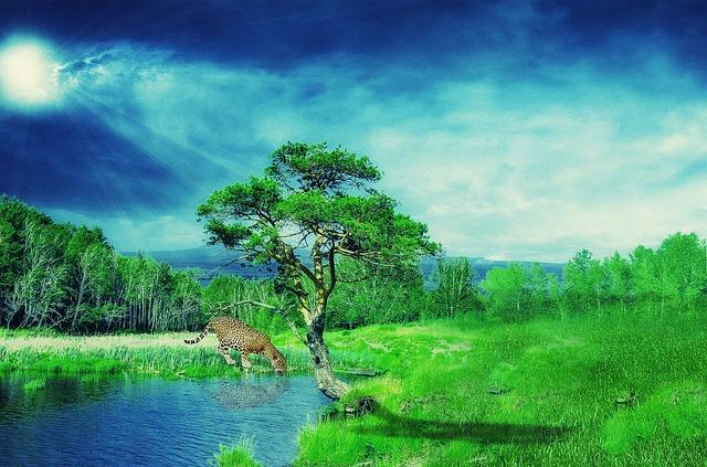 Wallpaper, Background, Jaguar, Forest, Nature, Cat