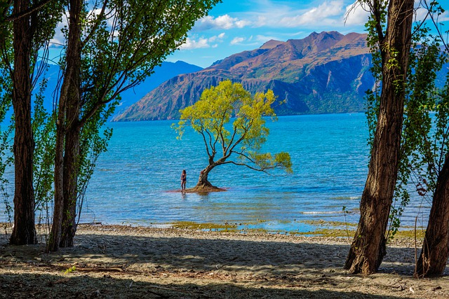New Zealand, Wanaka, Lake Wanaka, Cloud, Sky, Landscape