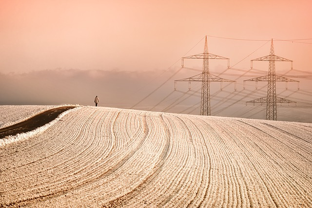 Winter, Snow, Power Poles, Person, Wanderer, Human