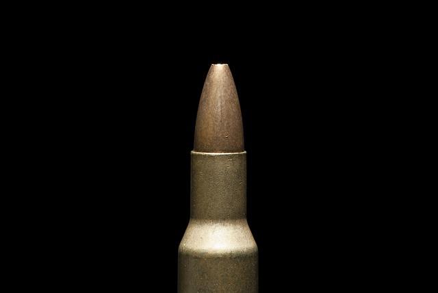 Dangerous, Crime, War, Macro, Danger, Shoot, Weapon