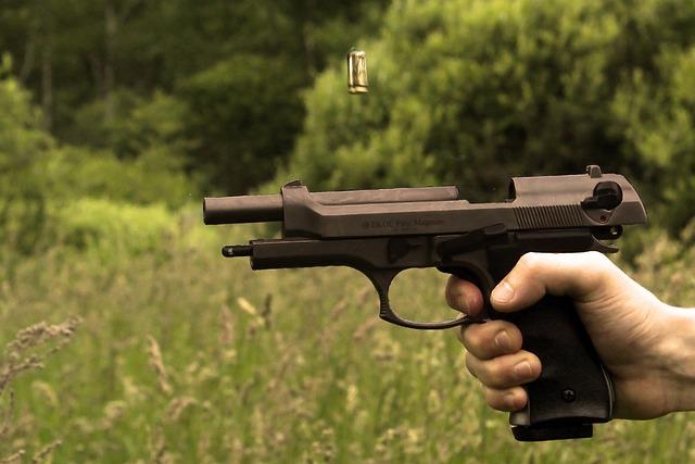 Gun, Shoot, Cartridge, War, Weapons