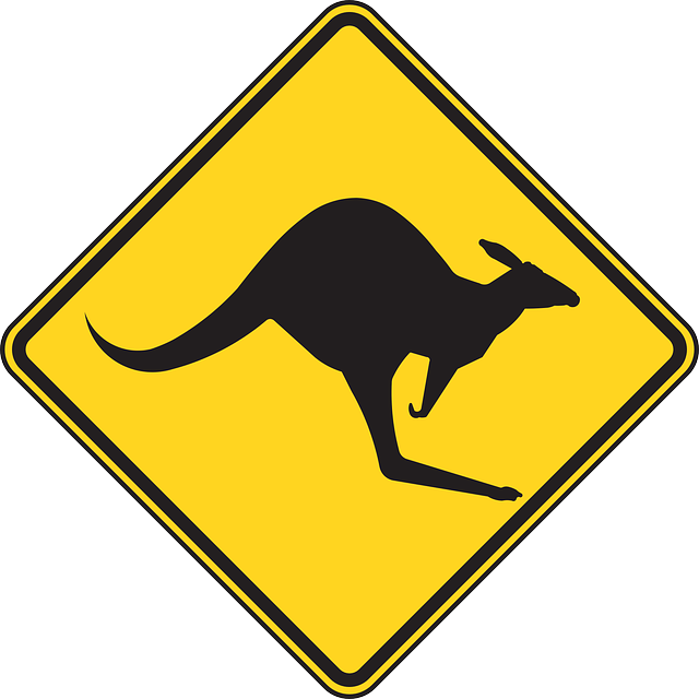 Warning, Kangaroo, Roadsign, Caution, Kangaroos, Street
