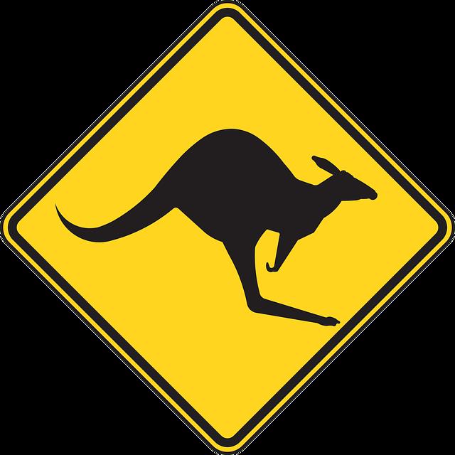 Warning, Kangaroo, Roadsign, Caution, Kangaroos, Street