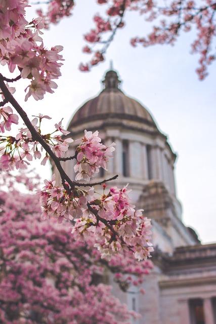 Capitol, Building, Washington, State, Spring, America