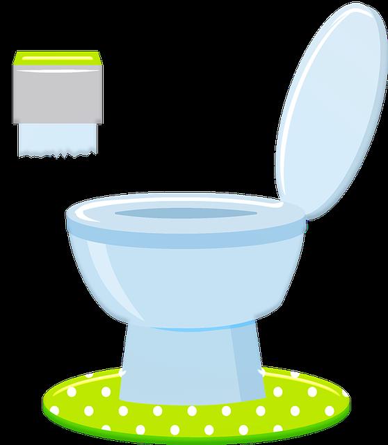 Toilet, Commode, Loo, Bathroom, Wc, Restroom, Washroom
