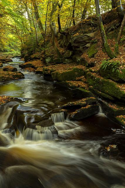 Autumn, Waterfall, Landscape, Forest, Water, Nature