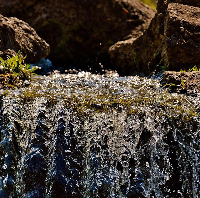 Water, Bach, Nature, Forest, Moss, Landscape, Flow