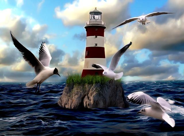 Lighthouse, Seagull, Bird, Water