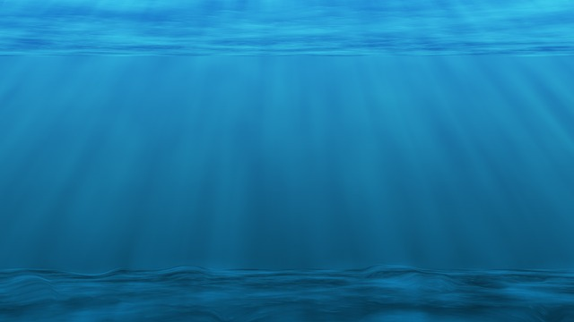 Underwater, Sea Ocean, Plankton, Blue, Water, Diver