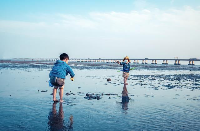 Child, Seaside, Water, Summer, Holiday, Blue, Bridge