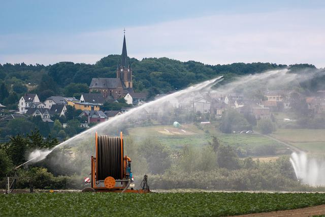 Irrigation, Church, Hose, Role, Water, Hose Reel