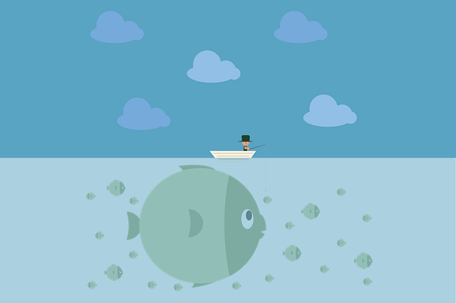 Fishing, Man, Water, Fisherman, Leisure, Male