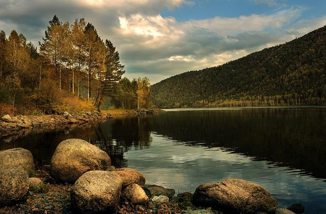 Autumn, Landscape, Forest, Nature, Creek, Lake, Water