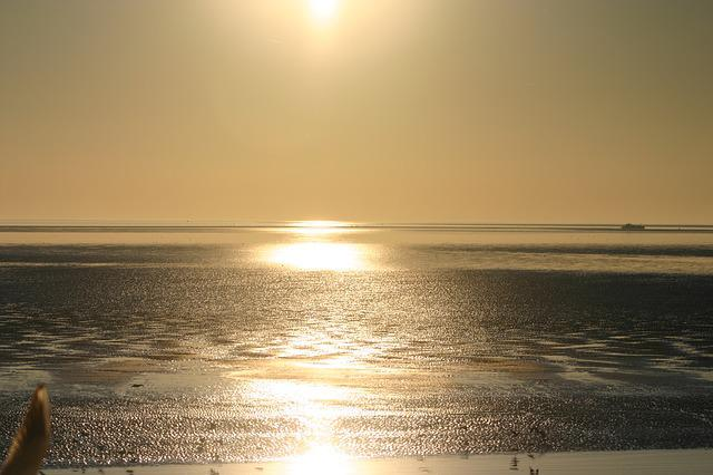 Ameland, Sea, Island, Beach, Water, Holiday, Landscape