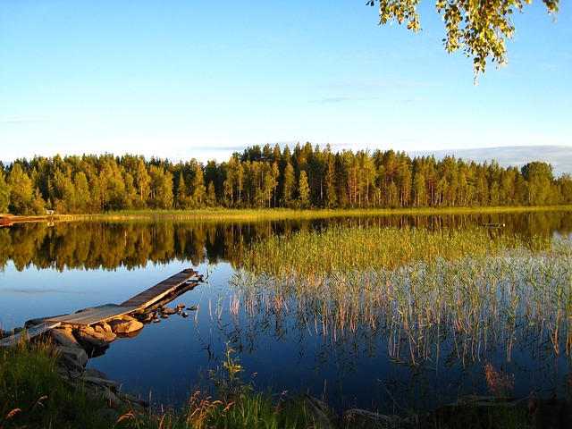Lake, Summer, Blue, Bridge, Water, Tree, Landscapes