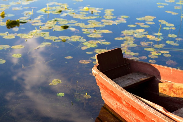 Boat, Lake, Water, Water Lily