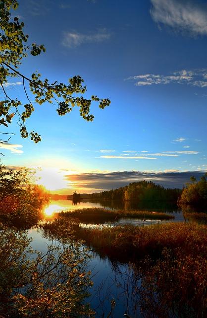 Landscape, Nature, Environment, Marsh, Water, Lake