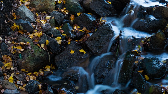 Waterfall, Leaves, Water, Nature, Natural Water