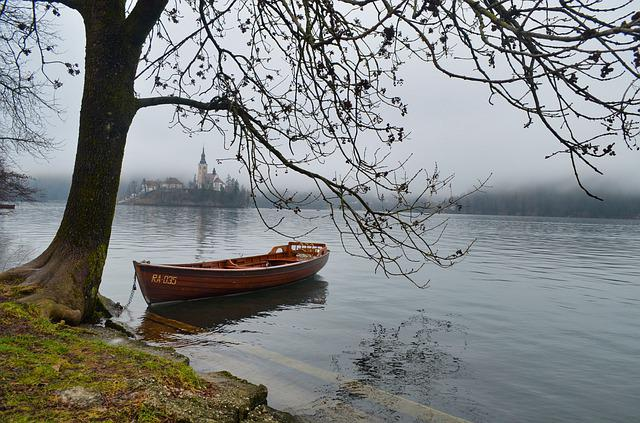 Bled, Slovenia, Tree, Water, Lake, Nature, Landscape