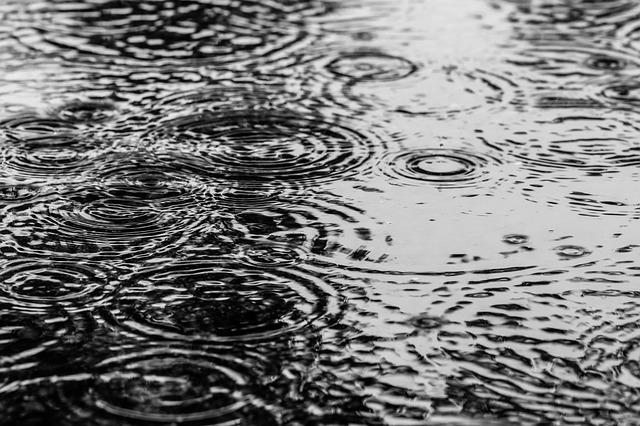 Puddle, Water, Rain, Drops