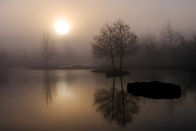 Dawn, Sunset, Water, Fog, Reflection, Lake, Landscape