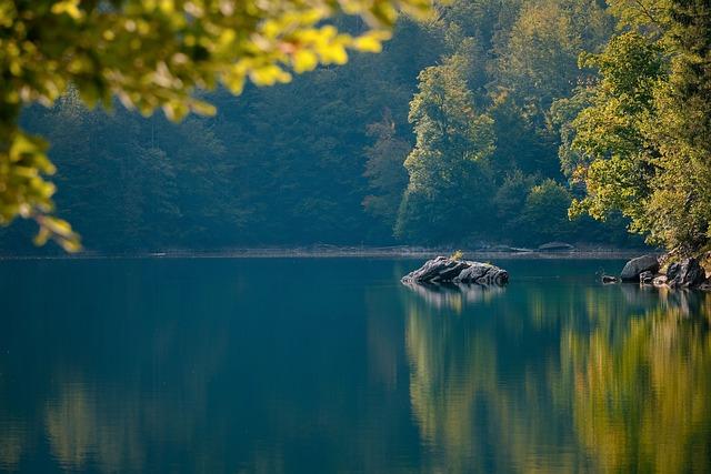 Lake, Rocks, Forest, Nature, Water, Landscape