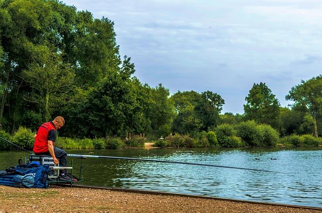 Fishing, Man, Rod, Angler, Lake, Trees, Outdoors, Water