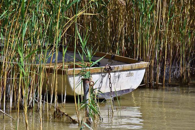 Boat, Fishing Boat, Kahn, Water, Rowing Boat, Fisherman
