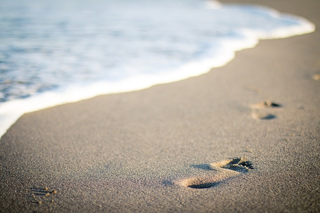 Sea, Beach, Vacation, Sand, Water, Summer, Steps, Waves