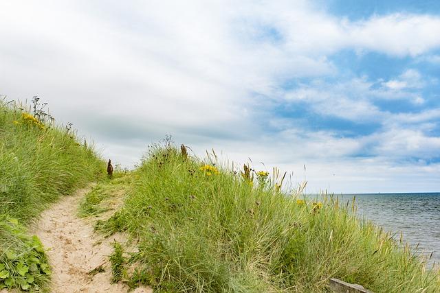 Aberdeen, Sun, Grass, Ocean, Sky, Sea, Water, Scotland