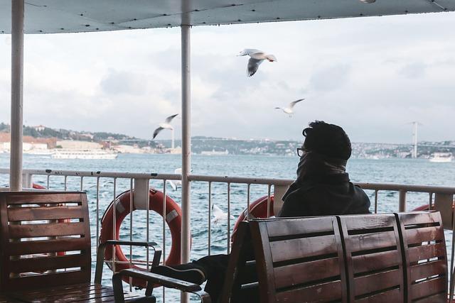 Seagull, M, See, Nature, Water, Bird, Beach, Sky