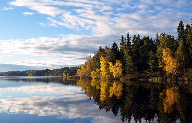 Flaten, Stockholm County, Reserve, Nature, Water