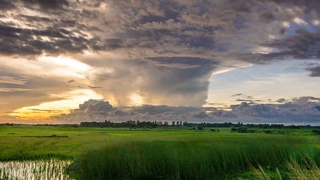 Nature, Sky, Green, Water, Clouds, Summer, Grass