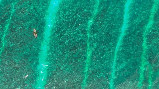Beach, Ocean, Person, Sea, Surfer, Surfing, Water