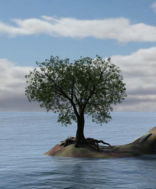 Heart, Water, Tree, Island, Sea, Lake, Sky, Clouds