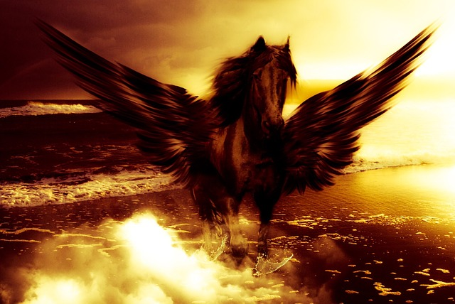 Pegasus, Sea, Water, Sky, Clouds, Wing, Feather, Flying