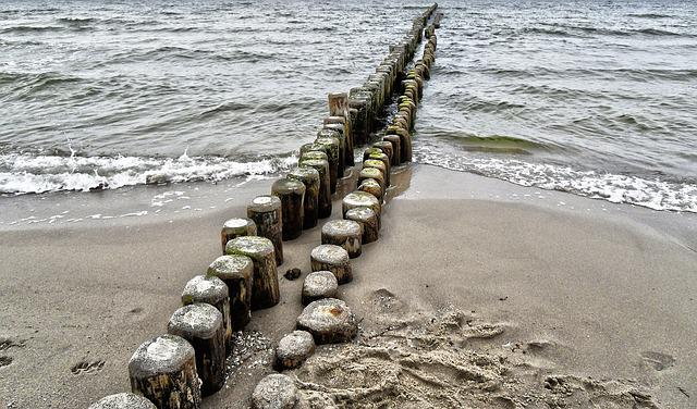 Baltic Sea, Water, Wood Pile, Coastal Protection